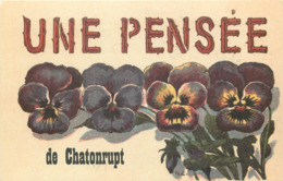 52 - Haute Marne - CHATONRUPT - 521122 -  Fantaisie Moderne - CPM Au Format CPA 9 X 14 Cm - France