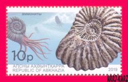 ABKHAZIA 2019 Fauna Marine Shell Fossils Extinct Cephalopods Ammonites Archaeology 1v MNH - Fossils