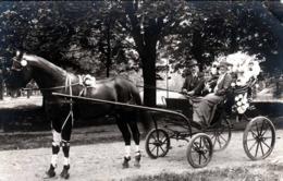 KRIEAU, Siegerpferd, Mali Und Ferdinand Wieser Mit Neffen Hansi, Pferd Und Wagen Geschmückt, ... - Reitsport