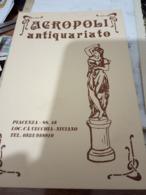 PIACENZA ACROPOLI ANTIQURIATO LOC VECCHIA NIVIANO N1990  HF986 - Piacenza
