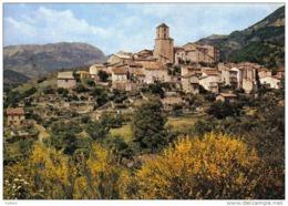 Carte Postale 04.  Thoard  Trés Beau Plan - France