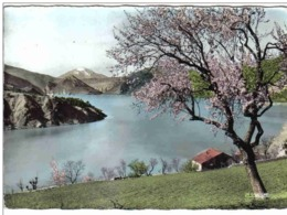 Carte Postale 04.  Saint-Julien-du-Verdon  Et Le Lac De Castillon  Trés Beau Plan - France