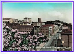 23551   CPM :  ENNA  ;   Palazzo Delle Finanze E Viali Dei Quartieri Nuovi   ! Superbe Carte Photo !!! - Enna