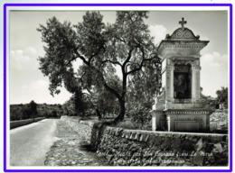 23555   CPM :  NOTO  : Strada Per San Corrado Fuori Le Mura Cappelle Della Madonnina !! Superbe Carte Photo !!! - Siracusa