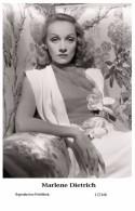 MARLENE DIETRICH - Film Star Pin Up PHOTO POSTCARD- Publisher Swiftsure 2000 (17/146) - Postales
