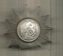 Cp,  MEDAILLE ,à Identifier, 2 Scans , Frais Fr 1.85 E - Badges & Ribbons