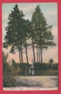 Bourseigne-Neuve - La Calvaire -1911 ( Voir Verso ) - Gedinne