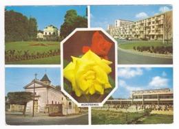 93 Montfermeil En 4 Vues Et Belles Roses N° 202 écrite En 1986 Eglise Ecole Peugeot 203 403 404 - Montfermeil