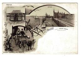 Souvenir D'Anvers Creoline Pearson Attelage VOIR ZOOM Et DOS Voiture Charette à Chiens Laitières Flamandes Avant 1904 - Belgique