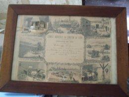 DIPLOME DU COMICE AGRICOLE 1898 DU CANTON DU LUDE 72 - Diploma & School Reports