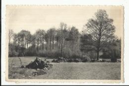 Maison Du Sacré-Coeur, CIPLY - Vue Sur Le Parc (MONS) - Mons