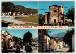SALUTI  DA  VIGNA  PESIO    VALLE  PESIO (CN)      (VIAGGIATA) - Altre Città