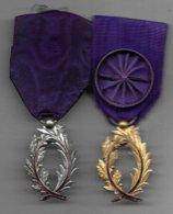 Palmes Académiques - 2 Médailles , Chevalier Et Officier - Médailles & Décorations