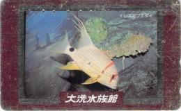 POISSON - FISH - ANIMAL  - Télécarte Japon - Telefonkarten