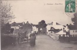 CPA :  14 X 9  -  7  -  FEGREAC  -  Pont-Miny - France