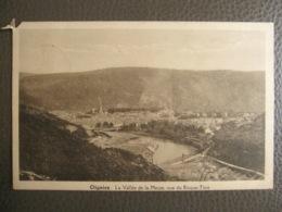 Cpa Oignies (Aiseau-Presles) - Vue Du Risque-Tout - Vallée De La Meuse - Aiseau-Presles