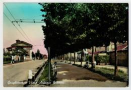 GRUGLIASCO  (TO)   VIALE  ANTONIO  GRAMSCI  ACQUARELLATA         (VIAGGIATA) - Altre Città