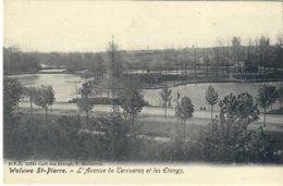 Woluwe-Saint-Pierre L'Avenue De Tervueren Et Les étangs D.V.D 13181 - St-Pieters-Woluwe - Woluwe-St-Pierre
