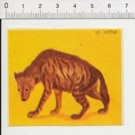 Image Papier / Hyène Animal IM 14/46 - Vieux Papiers