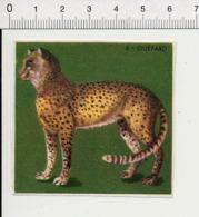 Image Papier / Guépard Animal IM 14/46 - Vieux Papiers