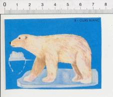 Image Papier / Ours Blanc (polaire) Animal IM 14/46 - Vieux Papiers