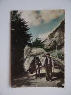 VALLS D'ANDORRA ANDORRE Attelage Âne - Andorre