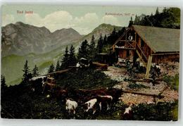 52501428 - Bad Ischl - Austria