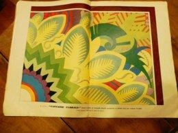 1934 Numéro 304  (L'ARTISAN PRATIQUE) Grand Coussin En Fustanelle Pyrogravée FANTAISIE FLORALE, Etc - Home Decoration