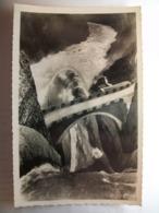 Carte Postale Genissiat (01) La Doucine  (Petit Format Noir Et Blanc Non Circulée ) - Génissiat