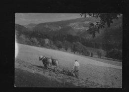 C.P.S.M. DE BIAUFOND 25 - Autres Communes