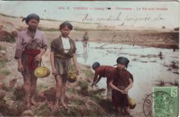 VIETNAM / QUANG YEN  // PECHEUSES TRES ANIMEE  1908 - Viêt-Nam