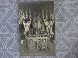 BOUCHERIE BOUCHER ABATTOIR CARCASSE VIANDE BOEUF AGNEAUX PRESENTATION SALON CARTE PHOTO - Métiers