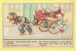 * Fantaisie - Fantasy - Fantasie * (Colorprint 53764/1) Chien, Dog, Hund, Hond, Love, Amour, Char, Attelage, Célibataire - Chiens