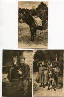 14 PAYSANS Et ANES 3 Cartes Scènes  Vie Paysanne Le Goubey La Normandie Pittoresque  No 1589 -2225 -2374     D14 2019 - France
