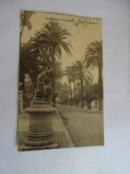 Cpa - (83) - Hyères Les Palmiers - Avenue De Belgique - 1920 - Hyeres