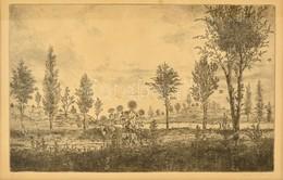 Gross Arnold (1929-): Nyár. Rézkarc, Papír, Jelzett, üvegezett Keretben, 23×34 Cm - Other Collections
