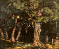 Halvax Gyula (1906-1984): Tölgyes 1924. Olaj, Vászon, Jelzett, Keretben, 35×41 Cm - Other Collections