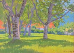 Mátrai Vilmos (1877-1961): Fények A Ligetben. Akvarell, Papír, Jelzett, üvegezett Keretben, 29×41 Cm - Other Collections