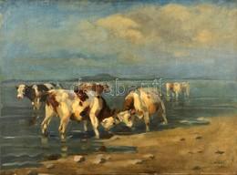 Viski János (1891-1987): Acsarkodó Tehenek A Balatonban. Olaj, Vászon, Jelzett, Foltos,  60×80 Cm - Other Collections