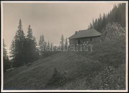 Cca 1910 Bucsecs, Menedékház A Malajesti-völgyben, Erdélyi Mór Felvétele, Hátulján Feliratozva, 11,5×16 Cm / Cca 1910 Mu - Other Collections