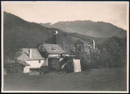 Cca 1910 Malom A Tömös-völgyben, Háttérben A Nagykőhavas, Erdélyi Mór Felvétele, Hátulján Feliratozva, 11,5×16 Cm / Cca  - Other Collections