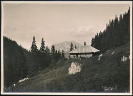 Cca 1910 Brassó Vidéki Hegyek, Malajesti-menedékház, Erdélyi Mór Felvétele, Hátulján Feliratozva, 11,5×16 Cm / Cca 1910  - Other Collections