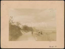 Cca 1880 A Fertő-tónál, Fotó, Kartonra Ragasztva, Feliratozva, 11×15,5 Cm - Other Collections