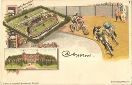 T2/T3 1898 Gliwice, Gleiwitz; Wald Schlosschen, Rad Rennbahn / Castle, Bicycle Racetrack With Cyclists. R. Schonwolf Art - Cartoline