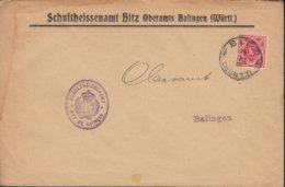 INFLA Württemberg Dienstpost 115 EF Auf Brief  Mit Stempel: Bitz 11.JAN 1919 - Wurtemberg