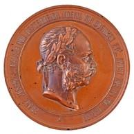Ausztria 1873. 'Bécsi Világkiállítás / A Haladás' Br Emlékérem. 'FRANZ JOSEPH I. KAISER VON OESTERREICH, KOENIG VON BOEH - Zonder Classificatie