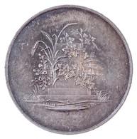 Német Államok / Köln 1865. 'Általános Mezőgazdasági Kiállítás' Jelzetlen Ag Emlékérem (ANUGA Kiállítás Elődje) (36g/41mm - Zonder Classificatie