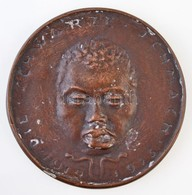 Esseő Erzsébet (1883-1954) 1923. 'Die Schwarze Schmach (Fekete Szégyen) 1919-1923' Br Emlékérem (73mm) T:2 Fo. 1923. 'Di - Zonder Classificatie