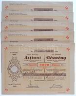 Románia / Satu-Mare (Szatmár) 1927. 'Szatmárvármegyei Takarékpénztár Részvénytársaság' Névre Szóló 10db Részvénye Egyben - Zonder Classificatie