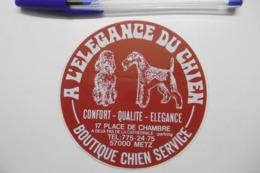 """Autocollant Stickers - Boutique CHIENS Service """"à L'élégance Du Chien"""" à METZ 57 MOSELLE - Autocollants"""